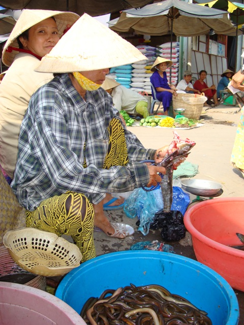 Buying fish at Vinh Long Market, Vietnam, photo courtesy Dropout Diaries